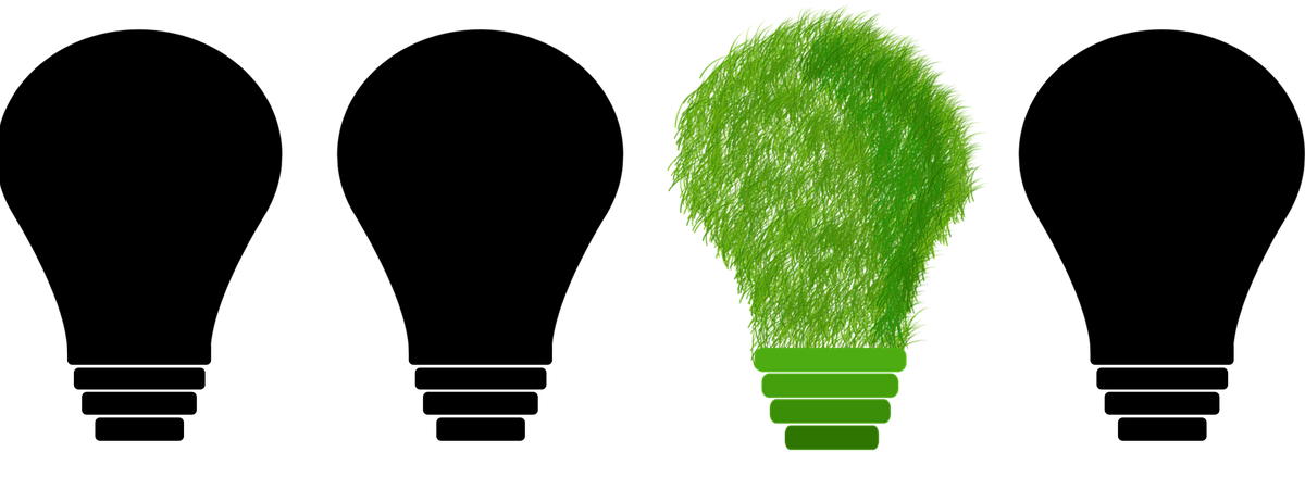sustainability in the corporate environment